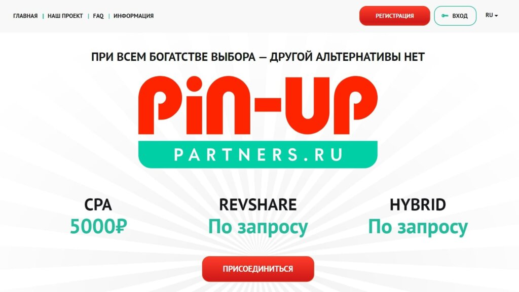 Pin Up Partners