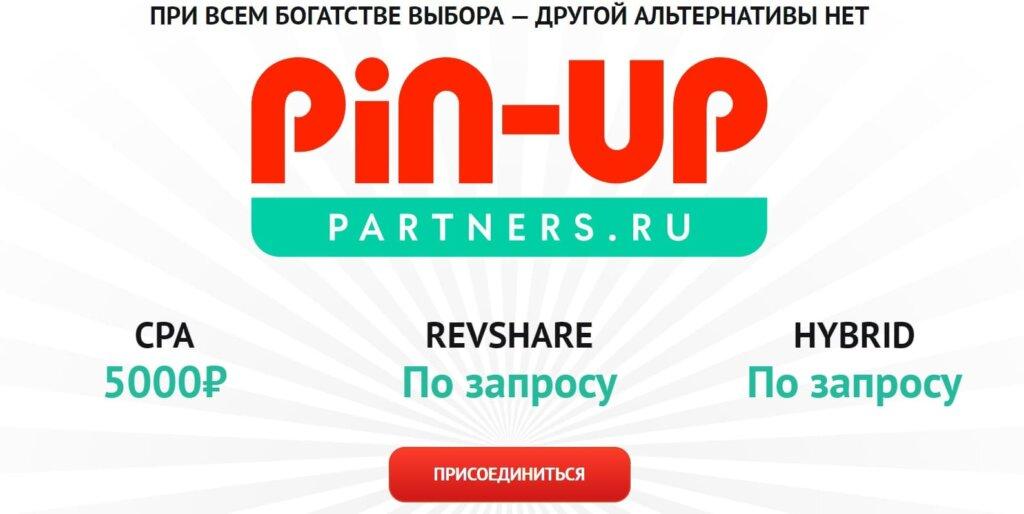 Оплата партнерской программы Pin Up Bet